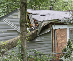 Wind damaged house with tree on roof